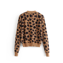 Leopard Pattern Cardigans Sweater