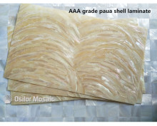 AAA grade natural surface paua shell laminate for musical instrument and furniture inlay