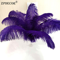 22~24 Inch 55 60 CM Super Ostrich Feathers OR High quality Ostrich feather