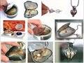 Nuevo Popular regalo Sterling Silver Wish colgante de corazón collar de perlas conjunto un (5.18)