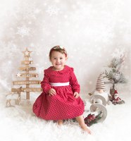 Kate Christmas Photography Background Snow Scenery Snowy Christmas Photographic Backdrop Wooden Floor Backdrop For Studio Photo