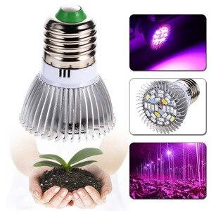 5pcs Full Spectrum Grow Lamp E