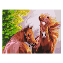 Hand Painted Canvas Oil Paintings,Paint By Number Kits,Animal Horse Painting Coloring Numbers