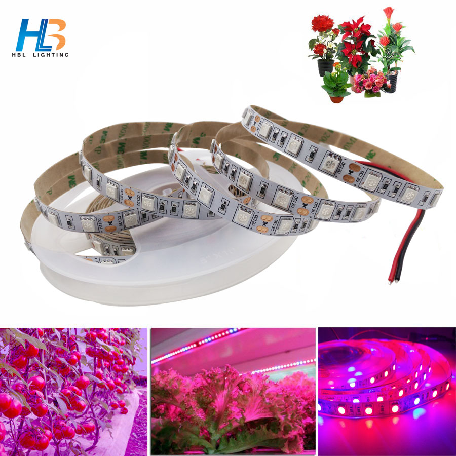 HBL LED Grow Lights DC12V Growing 3 Red 1 Blue LED Strip 5050 IP20 Plant Growth Light Nonwaterproof for Greenhouse plant 5m/roll zdm 5m 72w led plant light strip 300pcs 5050 5 red 1 blue group dc 12v