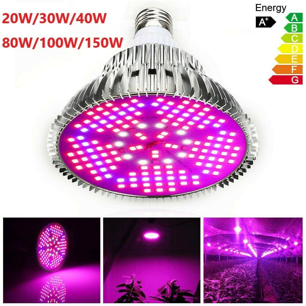 DINKO E27 Full Spectrum 20W 30W 40W 80W 100W 150W LED Grow Light Bulb Fitolampy