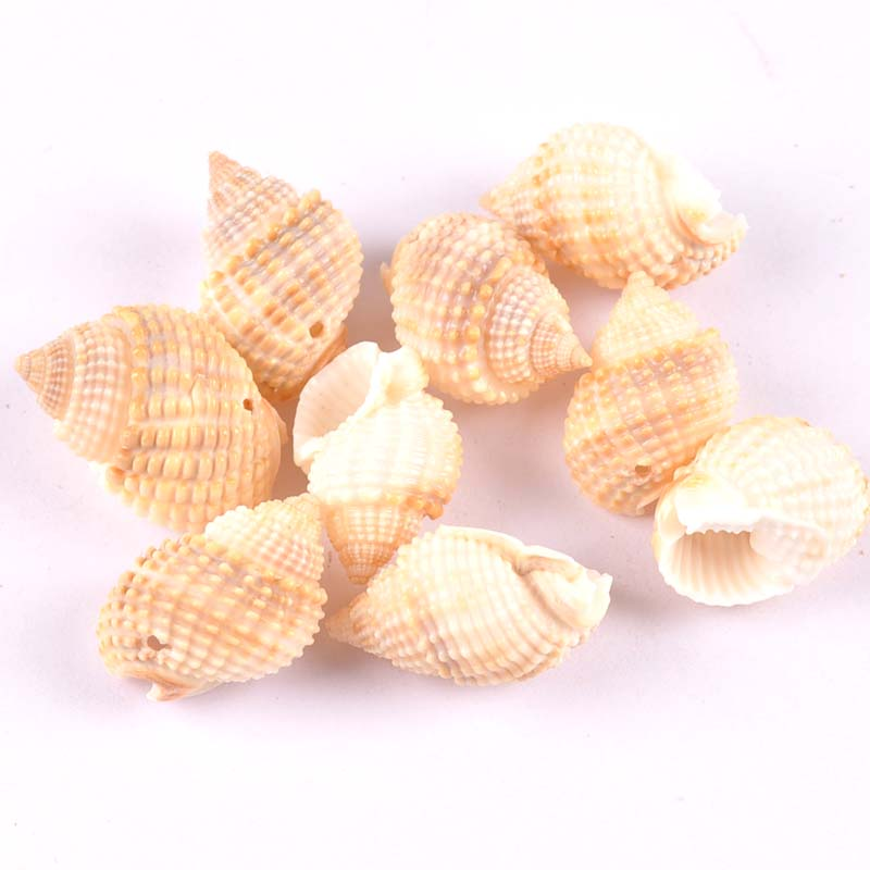 10pcs Natural Spiral Shell Scrapbooking Craft Charms Pendants Drop Seashells For Jewelry Making One Hole 2-3cm TRS0290