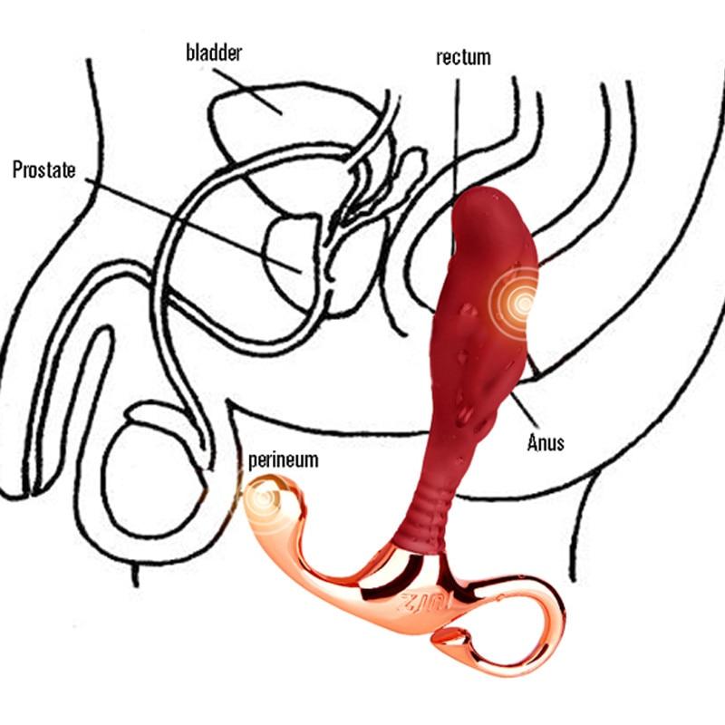 Comment utiliser un stimulateur de prostate