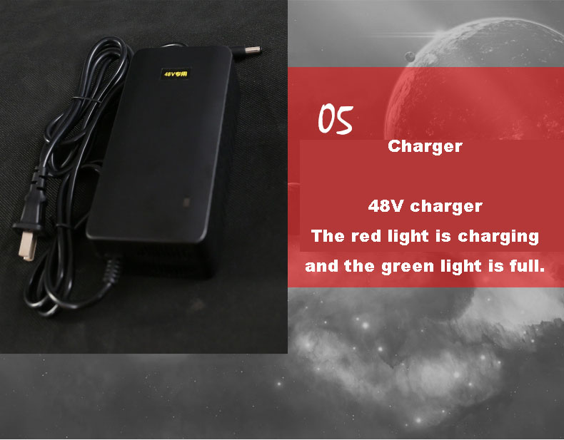 Electric Bicycle Charger...
