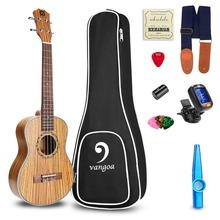 Mini Guitar 21 Soprano Zebra Wood Acoustic Ukulele, Aquila Strings with Ukulele Kit