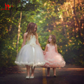 Lovely Ball Gown Littler Flower Girls Dresses for Weddings Lace Tulle Girls Communion Party Dresses Kids Prom Gowns