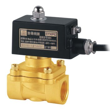 US $50 0 |Blast Proof Water Solenoid Valves 1'' 2W250 25 E 2/2 Way Valve  Brass Body Direct Acting-in Valve from Home Improvement on Aliexpress com |