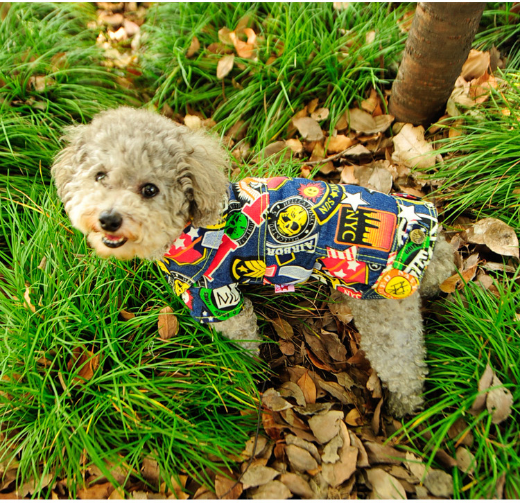 Fashion Graffiti Dog Coat Jacket Small Breed Dog Clothes Autumn