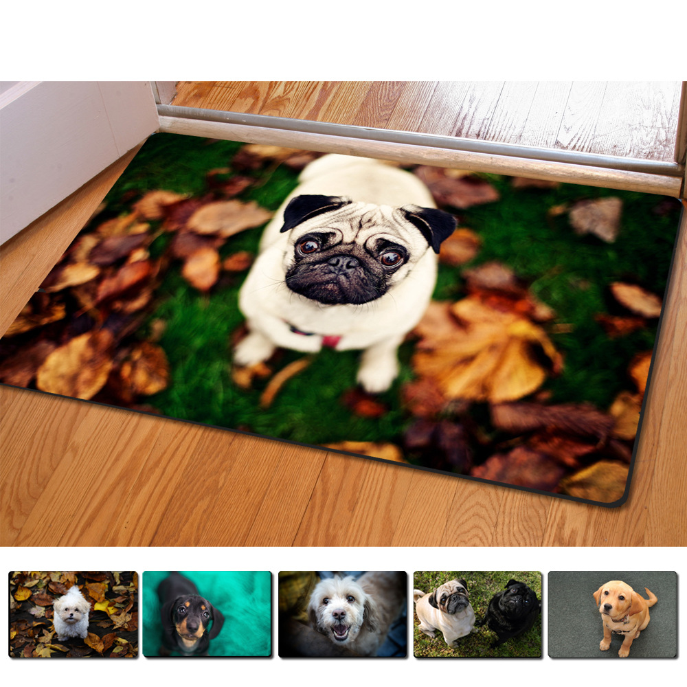 Rubber floor mats for dogs - 40 60cm Non Slip 3d Printed Doormats Teddy Dogs Printing Rubber Door Mat For