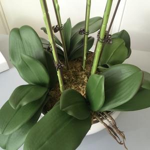 Image 5 - 1 סט גבוה כיתה סחלבים הסדר לטקס סיליקון אמיתי מגע גדול גודל יוקרה שולחן פרח בית מלון דקור אין אגרטל