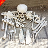 Halloween Life Size Skeleton Bones 28pieces Life Size Realistic Skeleton Bones Haunted House Escape Horror Props