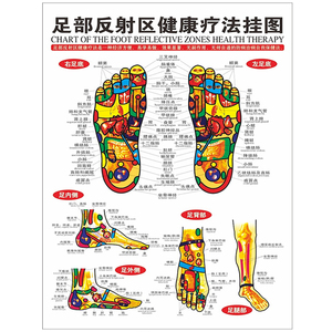 Image 1 - 1Pc Standard Reflexology Charts Of TCM Foot Acupoint Health Center Decorative Painting Sketch Map