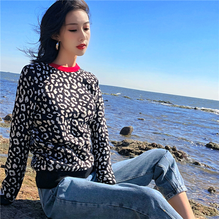Autumn winter women sweaters leopard knitted pullovers long sleeve Contrast Color crewneck jumpers sweter mujer C-429 4