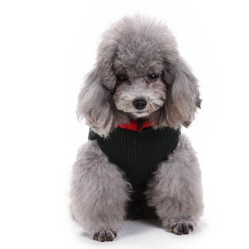 Bigeyedog Winter Dog Clothes Christmas Dog Sweater Puppy Dachshund