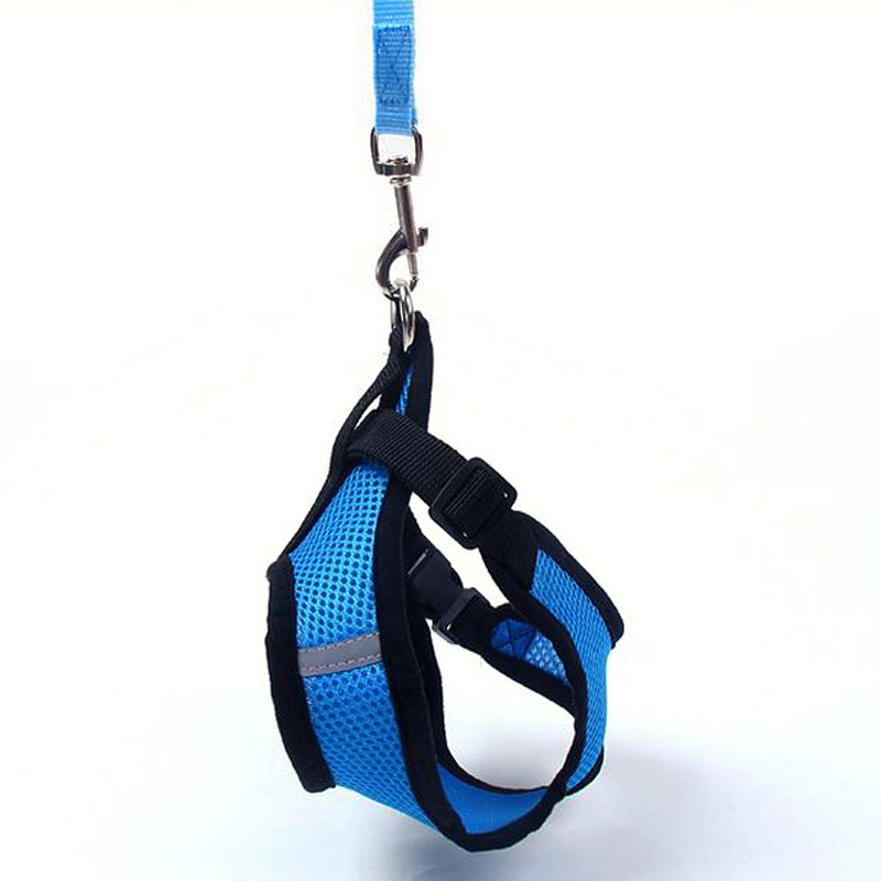 Dog / Cat Suit Leash Set