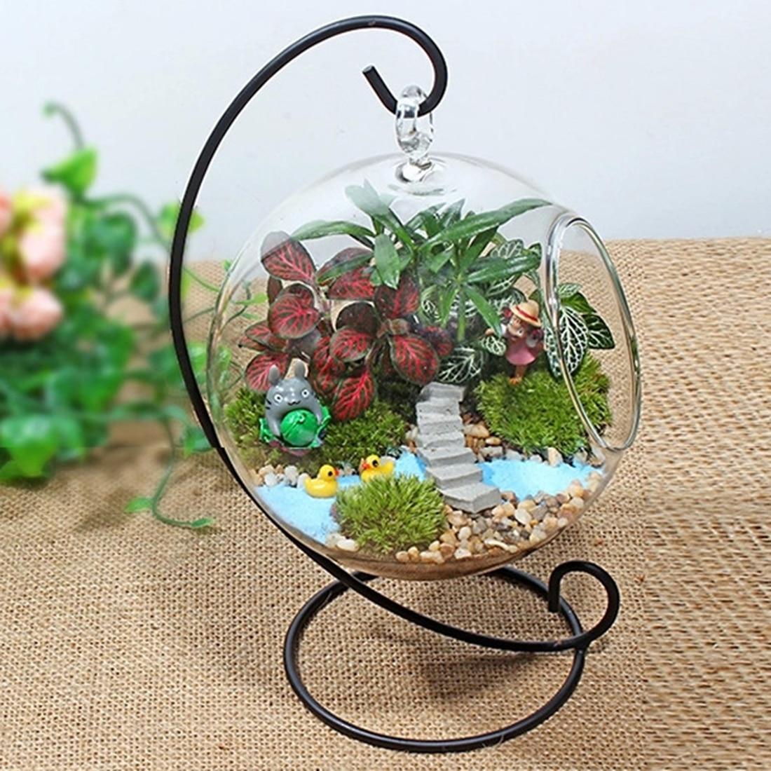 0d0f5b6da Jarrón de bola de cristal transparente creativo Micro paisaje planta de  aire terrario suculento colgante florero contenedor jarrones de flores para  casas
