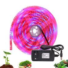 12 В постоянного тока Светодиодный светильник для выращивания 5 м светодиодный ленточный светильник гибкая лента 5050 светодиодный фито-лампы для роста растений для теплицы гидропоники для выращивания растений
