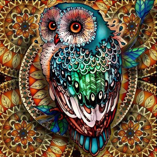 Zjzy 5d Diy Diamond Painting Mandala Owl Diamond Painting Round