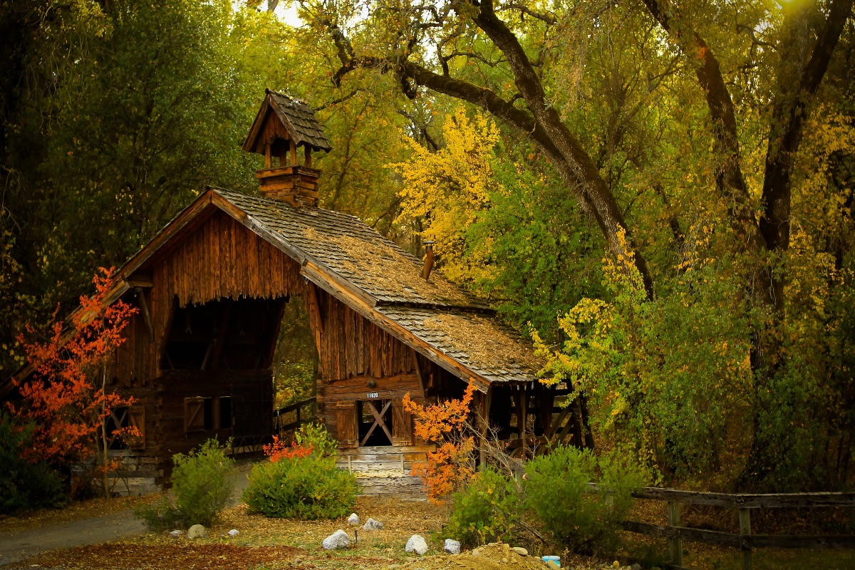 nature mountain forest landscape fog house tree ultrahd ...