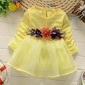 2016 muchachas del otoño del resorte ropa de bebé marca vestido de flores de ropa infantil baby girl princess tutu vestidos vestido de cumpleaños parte