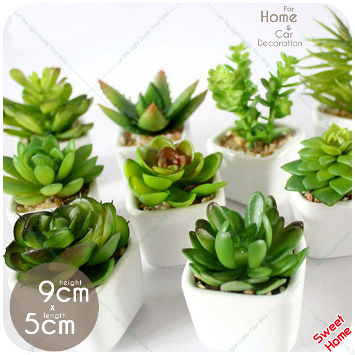 Decorative Mini Artificial Potted Fleshiness Plant