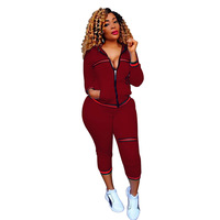 Zmvkgsoa 2 Pieces Set Tracksuit For Women Spring Autumn Casual Sportswear Female Suit Zipper Leisure Suits