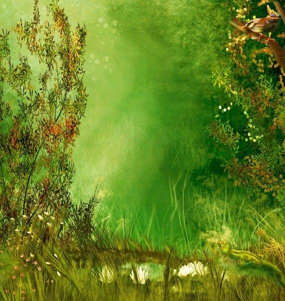 Remise Forêt verte secret jardin oiseau fleur toile de fond ...