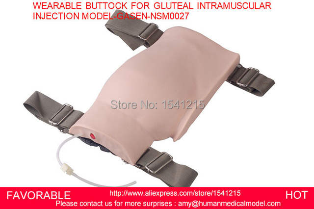 US $270 0 |BUTTOCKS INJECTION SIMULATOR, INJECTION BUTTOCKS MODEL,WEARABLE  BUTTOCK FOR GLUTEAL INTRAMUSCULAR INJECTION MODEL GASEN NSM0027-in Medical