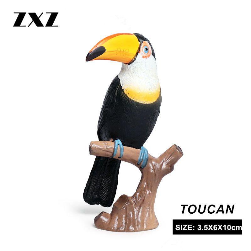 ZXZ Toy Garden-Decoration-Accessories Action-Figure Simulation-Toucan Animal-Model PVC