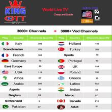 Iptv Espa a Spain Dutch Turkey Portugal Italia France Subscription Iptv Adult M3u Youporn Vod For X96 H96 Mag Htv Android Tv box(China)
