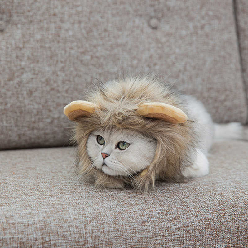 4c8b2dd1 ... Funny Cute Pet Costume Cosplay Lion Mane Wig Cap Hat for Cat Halloween  Xmas Clothes Fancy ...