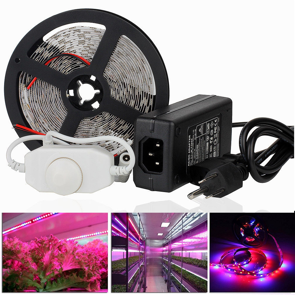 Plant Grow light Full Spectrum LED Strip Flower phyto lamp 1m 5m Red blue 3:1 4:1 5:1 7:1 Greenhouse Hydroponic + dimmer + Power