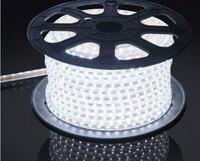 Водонепроницаемый SMD5050 светодио дный ленты AC220V белый гибкие светодио дный полосы 60 светодио дный s/метр наружного освещения сада с ЕС plug 100 м