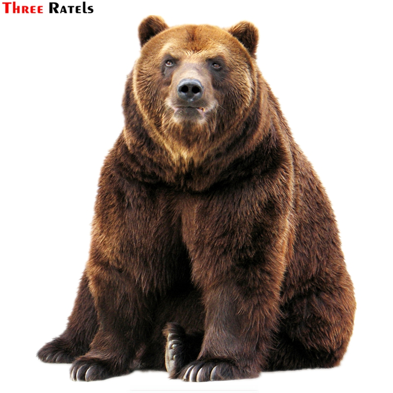 Three Ratels TZ-1528#17.1*15cm brown bear car stickers colorful funny auto sticker decals