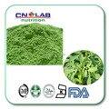 Free Shipping Hot Selling  natural alfalfa grass powder 500g, Slimming Tea