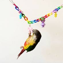 Play Mini Budgie Lovebird Toy Animals Mice Rats 35cm Pet Universal Swing Cage Climb Colorful Parakeet Cockatiel(China)