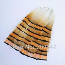 100 шт/партия 4-8 см свободные натуральные яркие оранжевые и черные цвета золотые фазаны Типпет перья, ремесленные перья