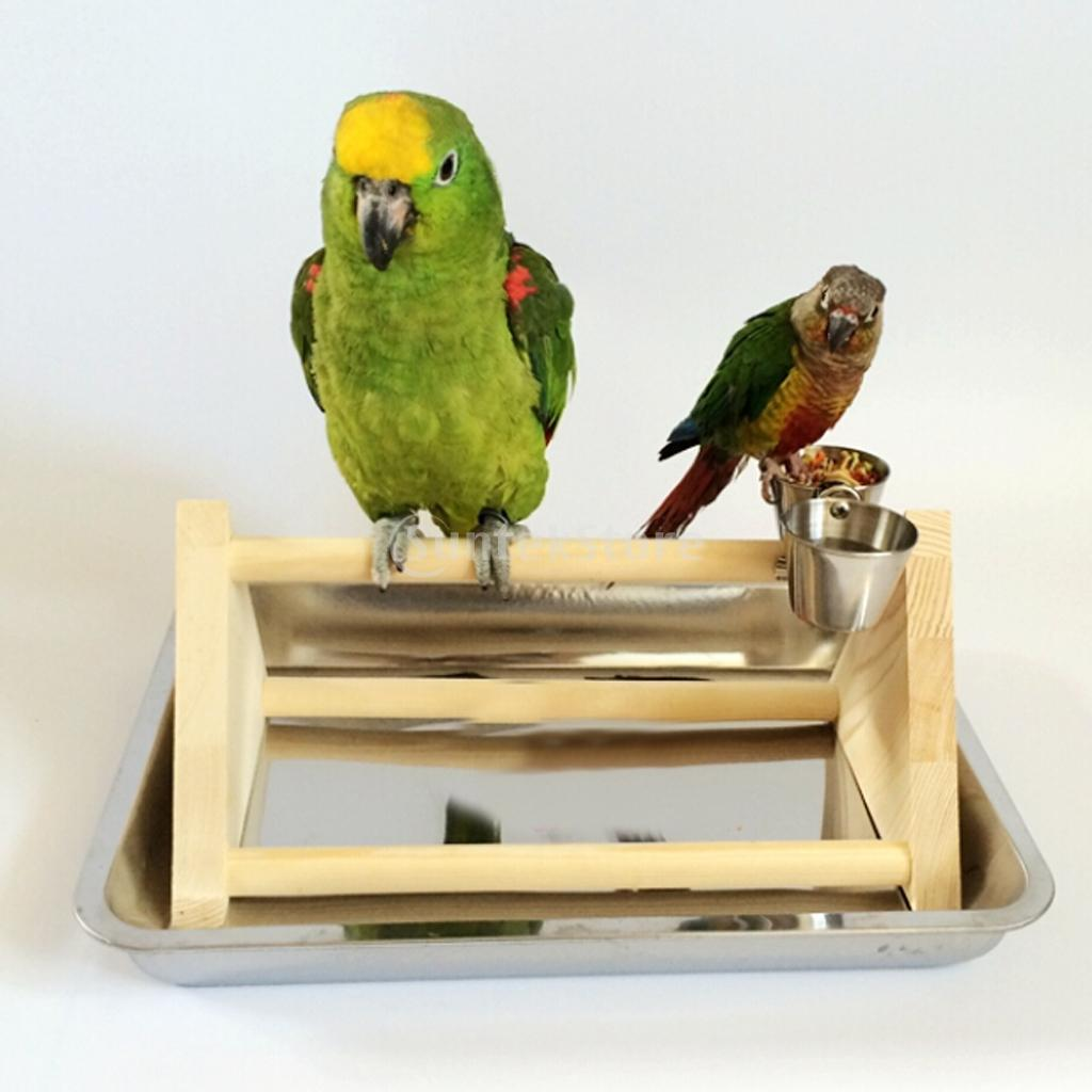 Wood Bird Toys : Wooden parrot stand bird standing toy play cage toys claws