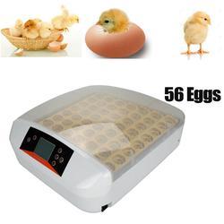 Автоматический 56 инкубатор для яиц, инкубатор для инкубаторов, куриных яиц, перепелиный Брудер, заводская цена