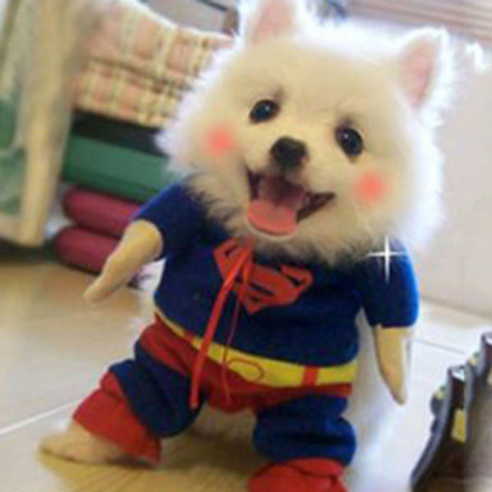 hot sales cute pet small dog superman clothes costumes suit puppy cats jumpsuit appareljpg