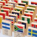 100pcs   Children National Flag Wooden Domino Toys ,kids wooden educational toys