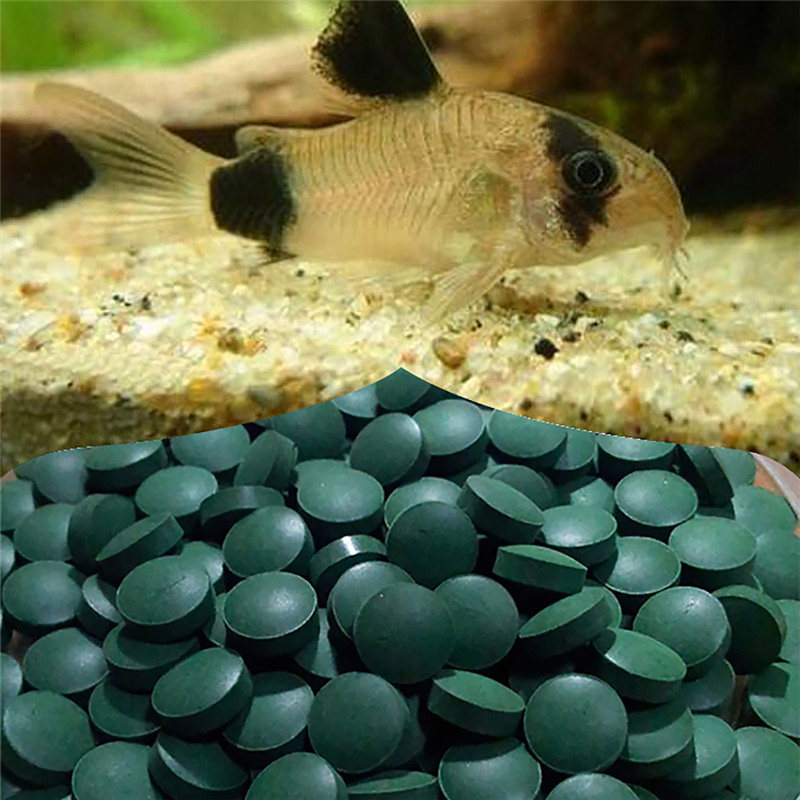 High Nutrition Aquarium Fish Tank Plants Foods Gourmet Discus Granules Natural Spirulina Tablets Pills For Underwater Plants