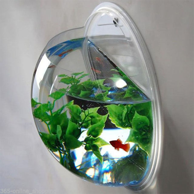 Home Decoration Pot Wall Hanging Mount Bubble Aquarium Bowl Fish Tank