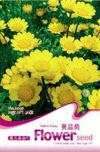 семенацветы садовые многолетние Цветок Хризантемы multicaule Семена, оригинальной Упаковке 30 шт. Сад бонсай семена цветов, легко Расти семена цветов
