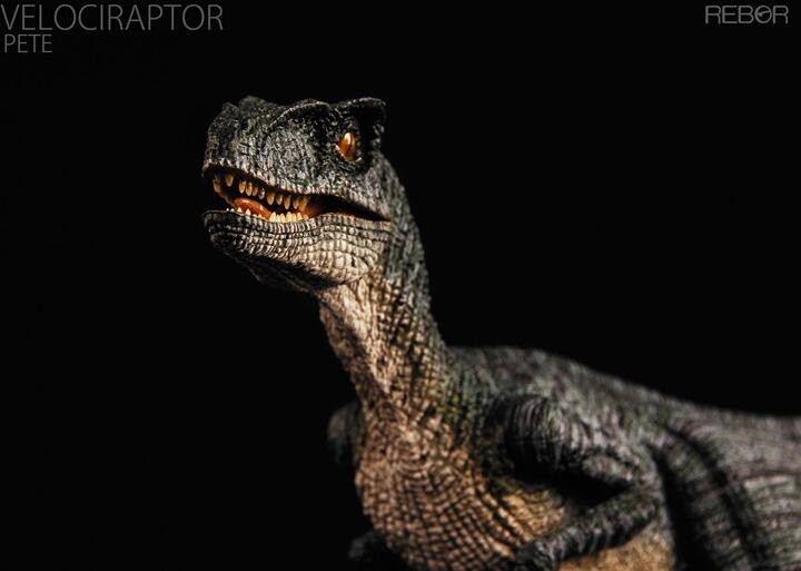 Velociraptor Pete Dinosaur Toy Model Classic Toys For Boys With Retail Box dinosaur animals model winder hunter utahraptor classic toys for boys children with retail box