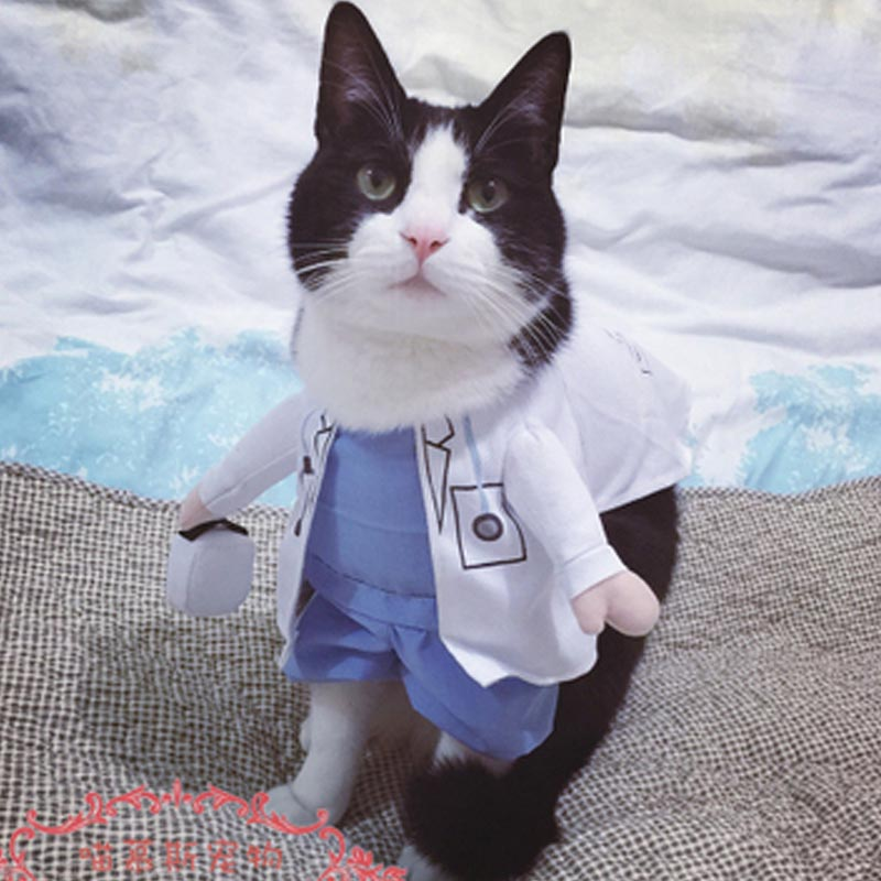 Dog And Cat Doctor